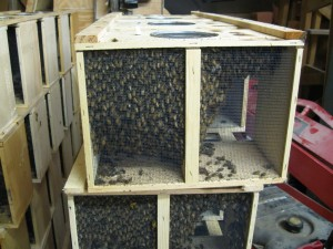 Two Common Ways To Get Bees – 5/1/12